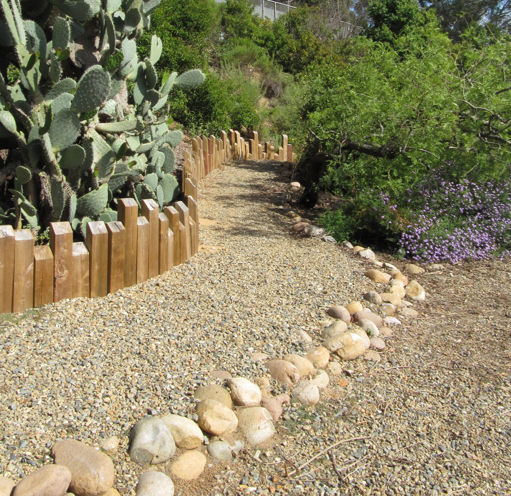 California Native Plant Garden