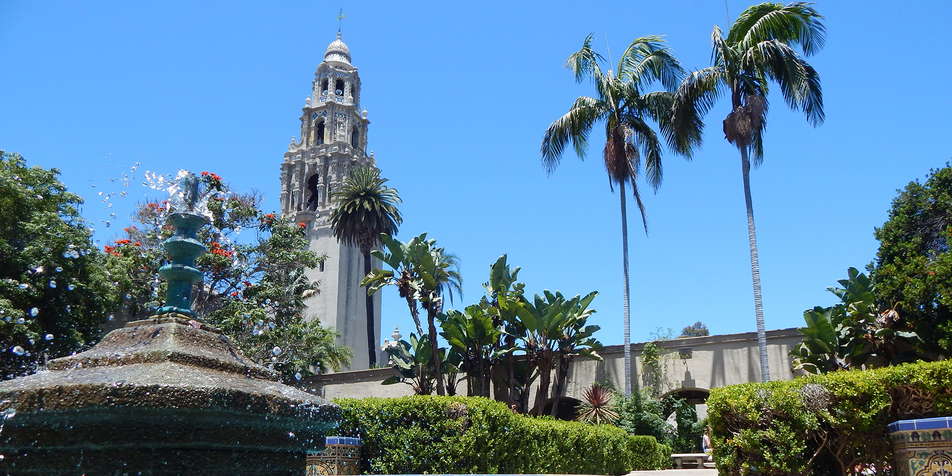 View of California Tower from Alcazar Garden