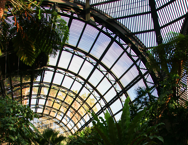Botanical Building Interior
