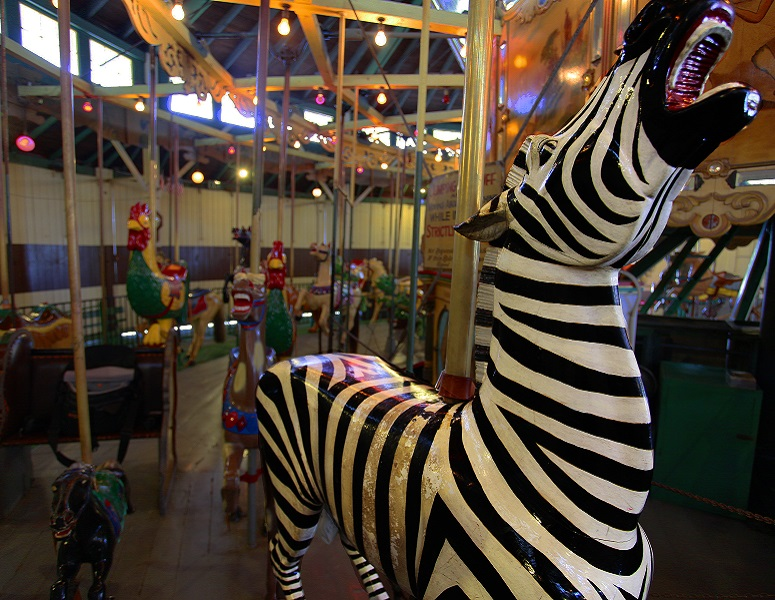 Zebra on the Balboa Park Carousel